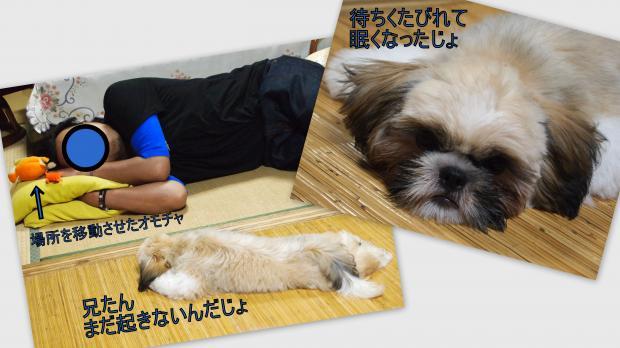 2012-07-082_convert_20120710001107.jpg