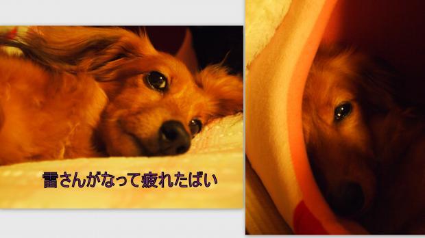 2012-07-21_convert_20120725235548.jpg