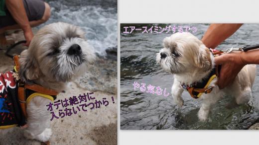 2012-07-291_convert_20120805002456.jpg