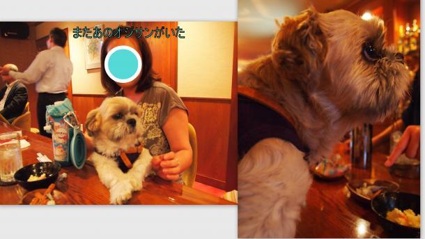 2012-08-063_convert_20120903012028.jpg