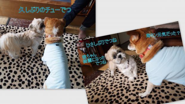 2012-08-092_convert_20120810004847.jpg