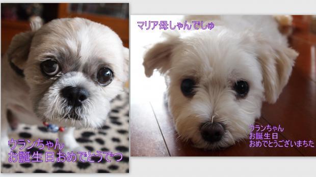 2012-08-182_convert_20120821020636.jpg