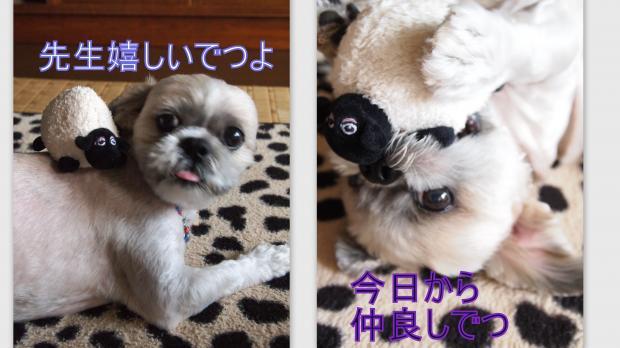 2012-08-183_convert_20120821020653.jpg