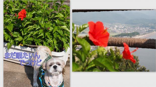 2012-09-024_convert_20120905154226.jpg