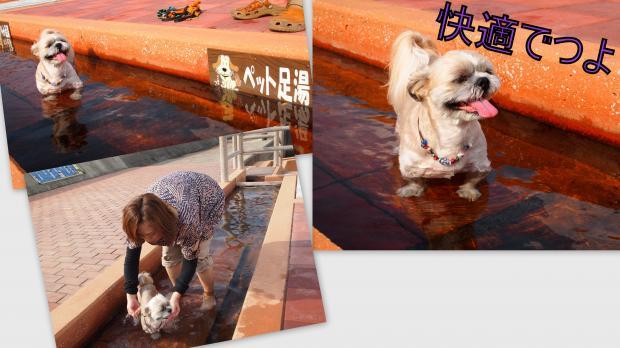 2012-09-027_convert_20120907013404.jpg