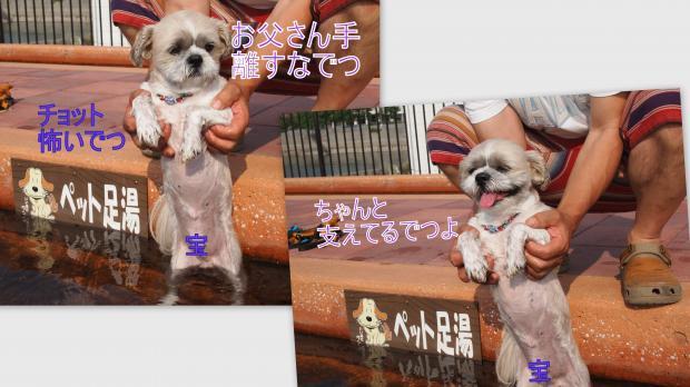 2012-09-028_convert_20120907013421.jpg