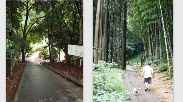 2012-09-1014_convert_20120924014901.jpg