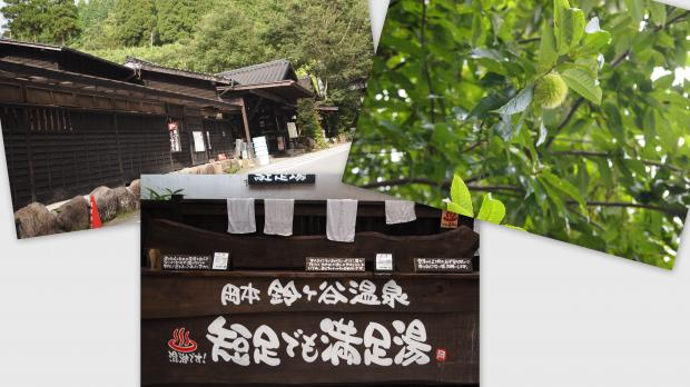 2012-09-121_convert_20120930020405.jpg