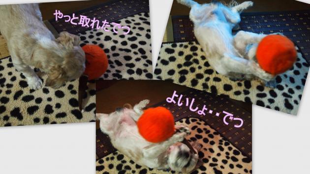 2012-09-14_convert_20120914225759.jpg