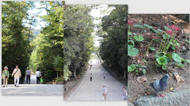 2012-10-023_convert_20121013020358.jpg