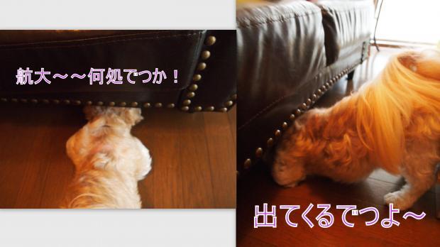2012-10-17_convert_20121018010650.jpg