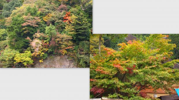 2012-10-253_convert_20121104225029.jpg