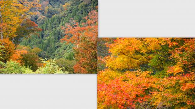 2012-10-255_convert_20121104225101.jpg