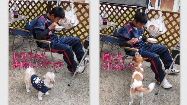 2012-10-283_convert_20121028222901.jpg