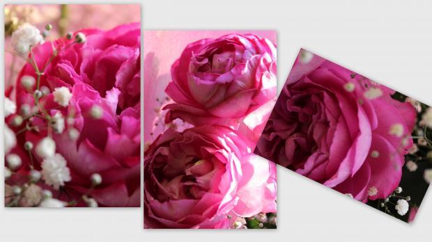 2012-11-014_convert_20121104210151.jpg