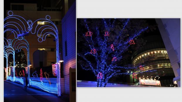 2012-11-15_convert_20121127012245.jpg