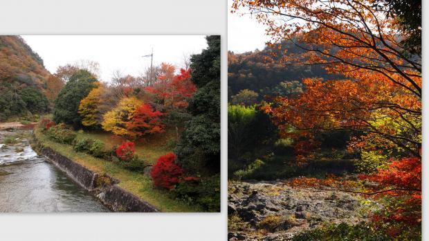 2012-11-185_convert_20121128015634.jpg