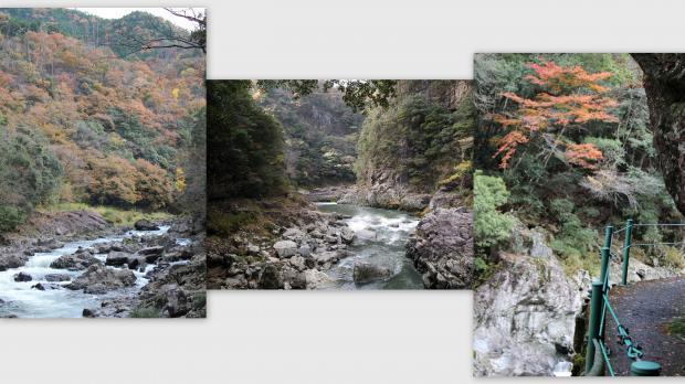2012-11-187_convert_20121128015710.jpg