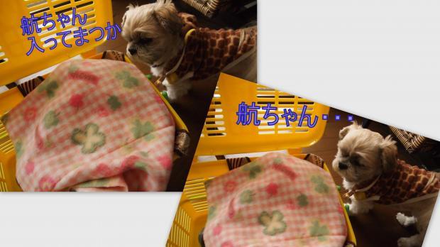 2012-11-211_convert_20121123151022.jpg