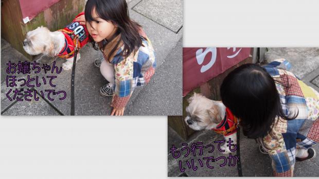 2012-11-254_convert_20121209011210.jpg