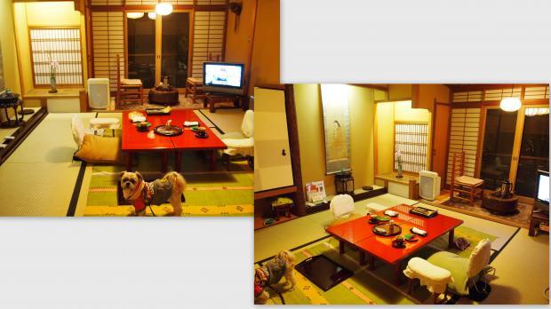 2012-12-018_convert_20130113215013.jpg