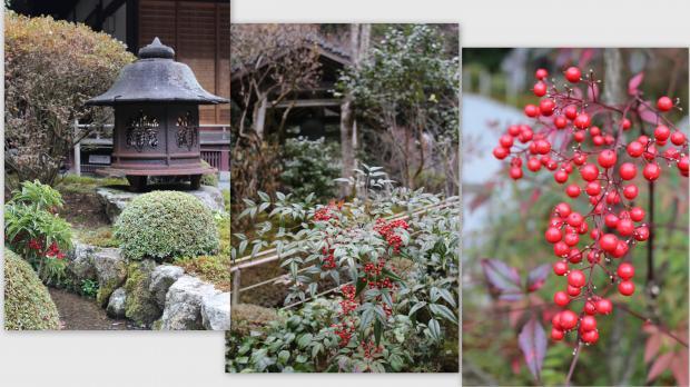 2012-12-173_convert_20130110011835.jpg