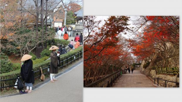 2012-12-178_convert_20121227022445.jpg