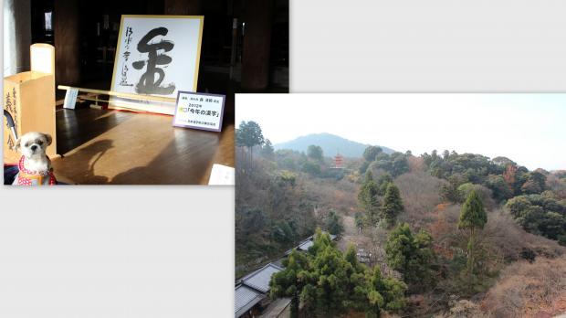 2012-12-179_convert_20121227022529.jpg
