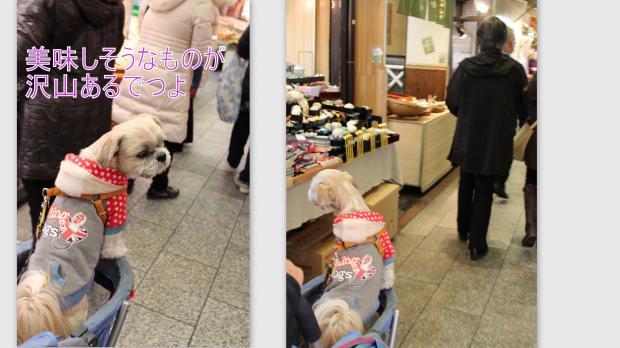 2012-12-185_convert_20130114225018.jpg