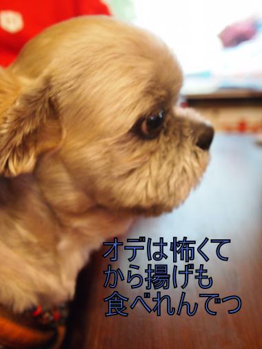 ・搾シ撤4282111_convert_20120504011318