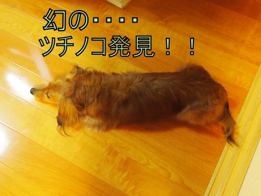 ・搾シ撤5052244_convert_20120507012852