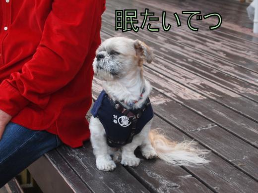 ・搾シ善5062293_convert_20120508234349