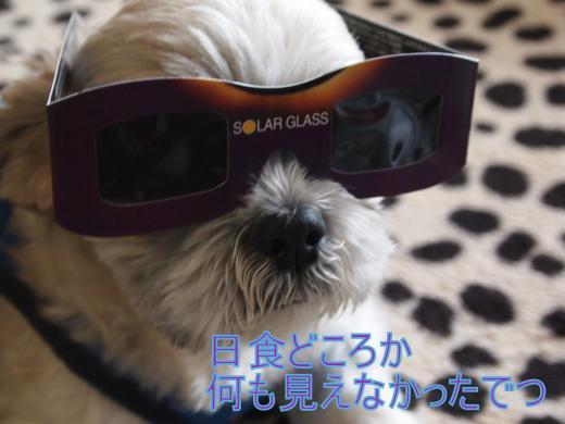 ・搾シ単5203142_convert_20120522030342