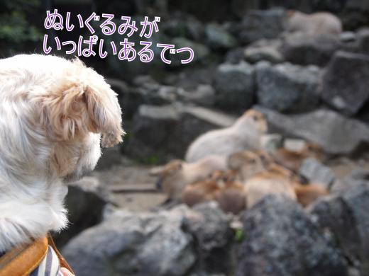 ・搾シ善5142751_convert_20120603232835
