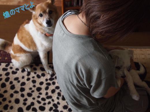 ・搾シ捻6023351_convert_20120606005706