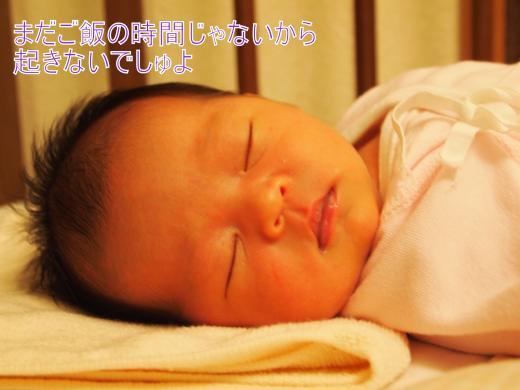 ・搾シ単6043439_convert_20120606212738