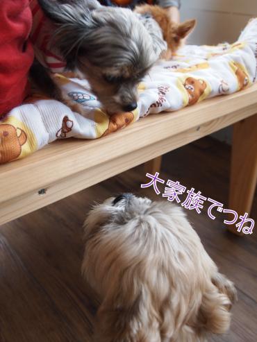 ・搾シ捻6043413_convert_20120606224325