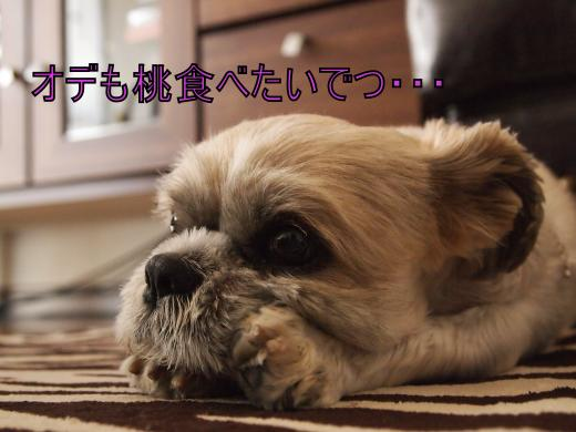 ・搾シ単6263826_convert_20120627023758