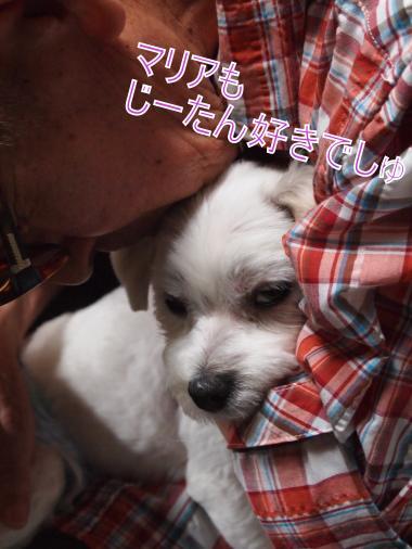 ・搾シ撤6273834_convert_20120701000834
