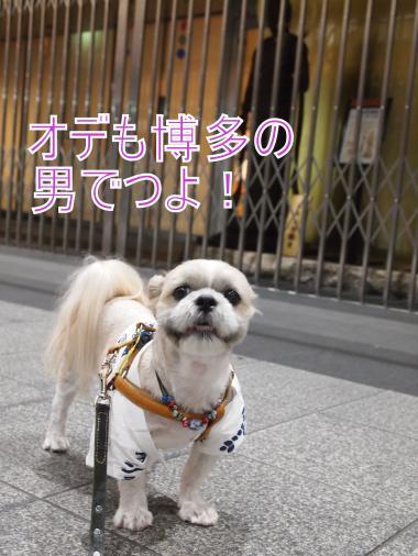 ・搾シ撤7014042_convert_20120702004950