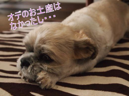 ・搾シ撤6263824_convert_20120705024644