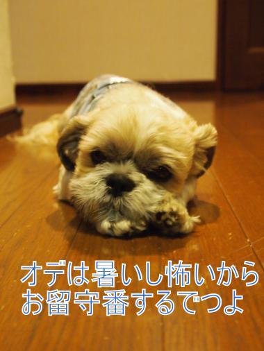 ・搾シ撤7114296_convert_20120712233547