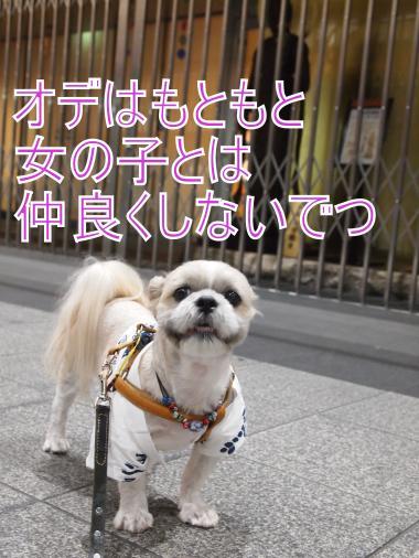 ・搾シ姫7014042_convert_20120712234228