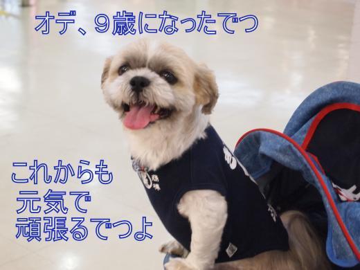 ・搾シ撤7164527_convert_20120719145401