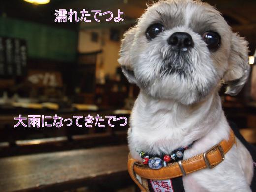 ・撰シ捻7013997_convert_20120712022837