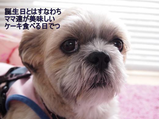 ・搾シ撤7204697_convert_20120724023216