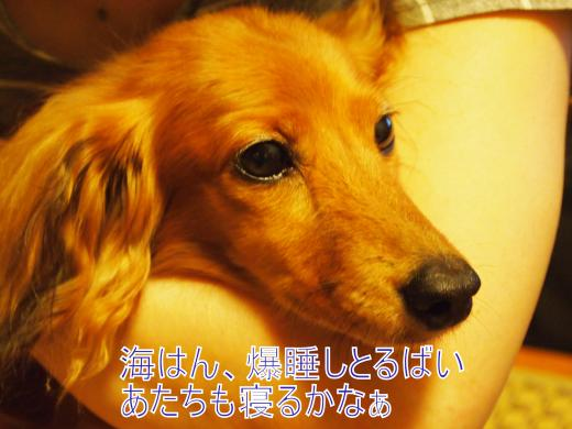 ・搾シ撤7224765_convert_20120725235658