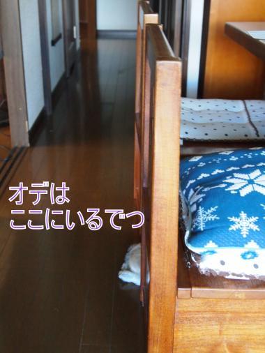 ・搾シ捻8064951_convert_20120808010148