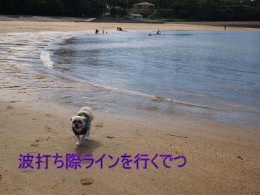 ・搾シ捻8205274_convert_20120822020725