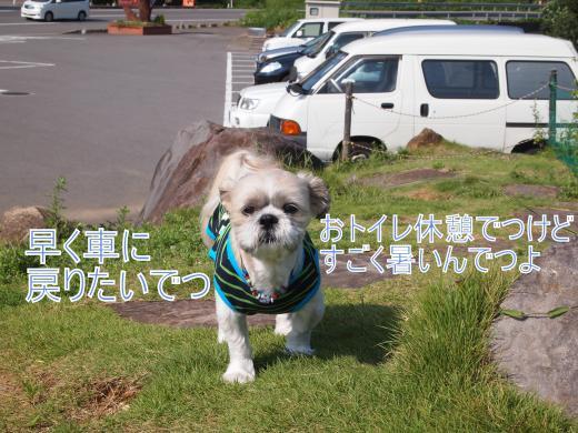 ・搾シ撤9025782_convert_20120905154313